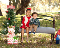 Holiday Family Session